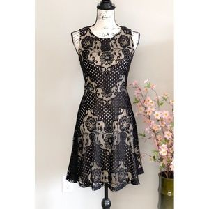 💕Gorgeous ECI New York Nude and Black Lace Dress